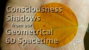 Consciousness shadows from our geometrical six dimensional spacetime